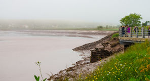 Tourists and local people observe the tidal bore roll into Moncton, New Brunswick, Canada. Royalty Free Stock Image