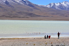 Tourists looking at a beautiful salt lake in Bolivia Royalty Free Stock Photography