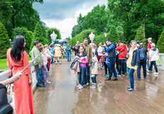 Tourists make photo in Peterhof, known for its palaces and fount Stock Image