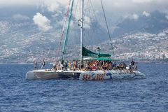 Tourists making a boat trip for whale watching near Madeira Island, Portugal Stock Images