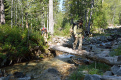 Tourists man and woman moving mountain river on fallen trees. Royalty Free Stock Photo