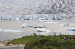 Tourists at the Mendenhall Glacier Royalty Free Stock Image