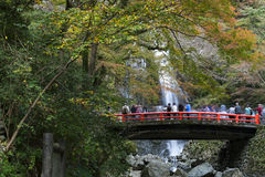 Tourists at Minoo waterfall in Osaka, Japan. Stock Images