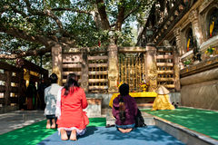 Tourists and monks meditating around the holy Bodhy tree Royalty Free Stock Photos