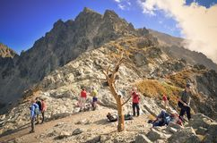 Tourists on mountain pass. Royalty Free Stock Images