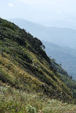 Tourists on the mountain. Tourist walked on the mountain royalty free stock image