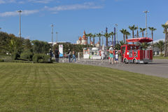 Tourists near the lawn with flower bed in the form of of Formula 1 car in the Sochi Olympic Park Stock Image