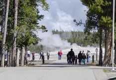 Tourists At Old Faithful. Tourists watching Old Faithful erupt at Yellowstone National Park Stock Photo