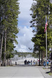 Tourists At Old Faithful. Tourists watching Old Faithful erupt at Yellowstone National Park Royalty Free Stock Photo