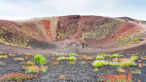 Tourists On Edge Of Big Crater On Mount Etna Stock Images
