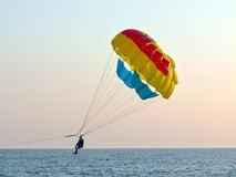 Tourists with parachute above the sea Stock Photography