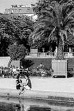 Tourists and Parisians relaxing in the Luxembourg Gardens. Paris. Paris, France - July 07, 2017: Tourists and Parisians relaxing in the Luxembourg Gardens Jardin Royalty Free Stock Image