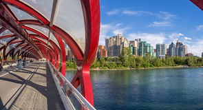 Tourists on the Peace Bridge Royalty Free Stock Photography