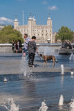 Tourists and pet dog enjoy the fountains on Southbank. LONDON, UK - MAY 12, 2016: Tourists and pet dog enjoy the fountains  on the Southbank with Tower of London Royalty Free Stock Photo