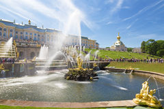 Tourists in Peterhof fountains of the Grand Cascade. Stock Photography