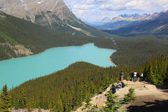 Tourists at  Peyto Lake in Banff National Park, Alberta, Canada Stock Photos