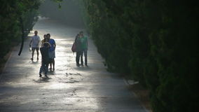 Tourists in photography.Visitors walk under shade of trees,walking on road. stock video footage