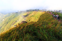 Tourists on phu chi fa. Royalty Free Stock Images