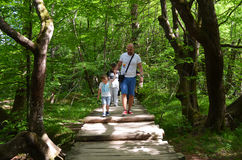 Tourists in Plitvice lakes in Croatia Stock Photography