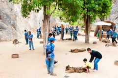 Tourists posing with tigers at the Tiger Temple in Kanchanaburi, Thailand Stock Image