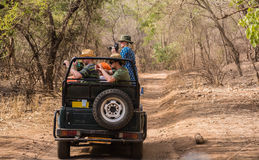 Tourists in ranthambhore safari Stock Image