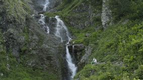 Tourists relaxing on the background of a waterfal in the Caucasus mountains. Waterfall in the Caucasus mountains surrounded by many pine trees, ending into a stock video footage