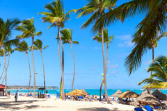 Tourists relaxing under palms in Punta Cana resort Royalty Free Stock Photos