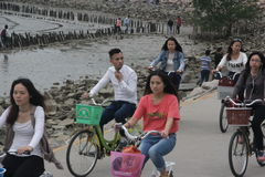 Tourists ride a bike Stock Images