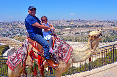 Tourists ride a camel against the old city of Jerusalem, Israel. Tourists (grandfather and his grandchild)m ride a camel against temple mount in the old city of Stock Photo