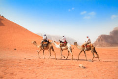 A tourists ride camels in desert Royalty Free Stock Images