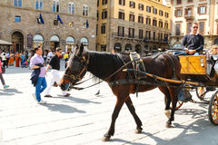 Tourists ride on a carriage pulled by a horse in Florence, Italy Royalty Free Stock Photography
