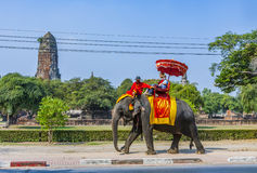 Tourists ride on an elephant in the Historical Park. AYUTTHAYA, THAILAND - DEC 23,2009: tourists ride on an elephant in the Historical Park in Ajutthaya Stock Photos