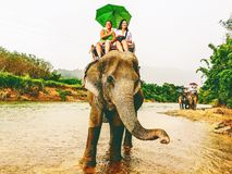 Tourists ride elephant in Thailand. Tourists ride elephants during raining cross the river at Khao Sok Royalty Free Stock Image