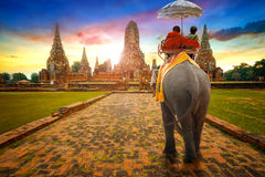 Tourists Ride an Elephant at Wat Chaiwatthanaram temple in Ayuthaya, Thailand Royalty Free Stock Image