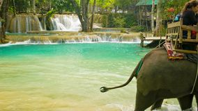 Tourists ride on elephants. Such entertainment is good business for local stock video footage