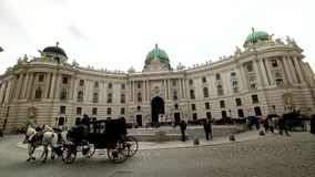 Tourists ride in a fiakre in old city centre of Vienna stock video