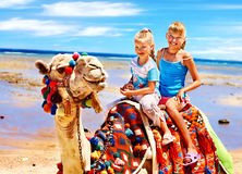 Tourists riding camel  on the beach of  Egypt. Royalty Free Stock Images