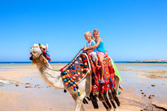 Tourists riding camel  on the beach of  Egypt. Stock Photos