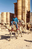 Tourists riding a camel Royalty Free Stock Photo
