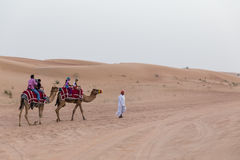 Tourists Riding Camel with Tamer in The Desert of Dubai Royalty Free Stock Image