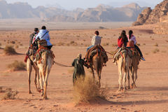 Tourists riding camels at sunset in the Wadi Rum desert, Jordan Stock Photos