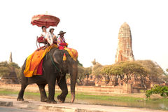 Tourists riding on elephant along the way. stock image