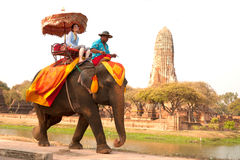 Tourists riding on elephant along the way. Stock Photos