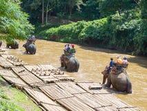 Tourists riding on elephant trekking royalty free stock photography