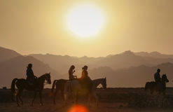 Tourists riding horses Royalty Free Stock Image