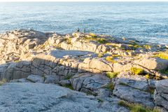 Tourists on the rocks on the shores of the Barents Sea, the isla Royalty Free Stock Photos