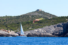 Tourists With Sailboat At Giannutri Island, Italy Stock Photography