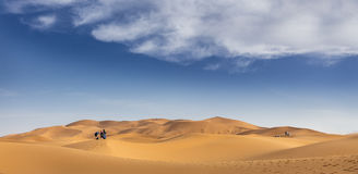 Tourists on sand dunes Royalty Free Stock Images