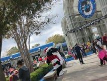 Tourists and Sea world Mascot Shamoo in San Antonio. Texas Stock Images