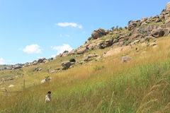 Tourists at Sibebe rock, southern africa, swaziland, african nature Royalty Free Stock Photos